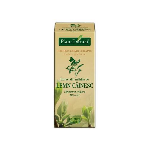 Extract din mladite de lemn cainesc (Ligustrum vulgare) 50 ml Plant Extrakt