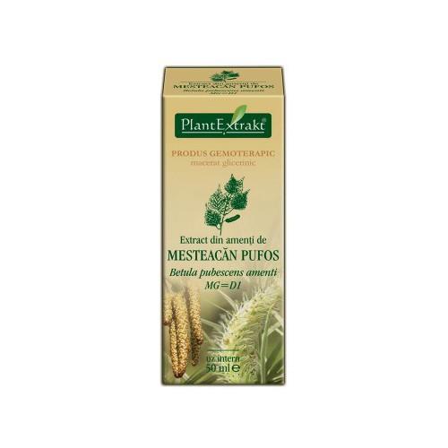 Extract din amenti de mesteacan pufos (Betula pubescens amenti) 50 ml Plant Extrakt