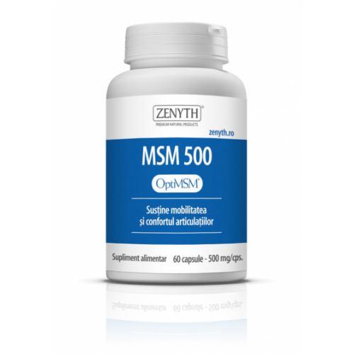 MSM 500 60CPS ZENYTH