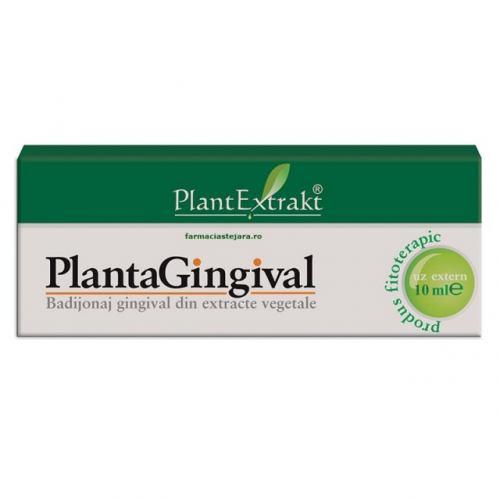 Plantagingival 10ML PLANT EXTRAKT